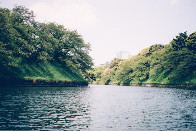 chidoya-tokyo-april-1
