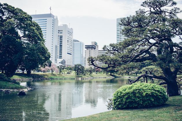 hamarikyu-gardens-tokyo-3