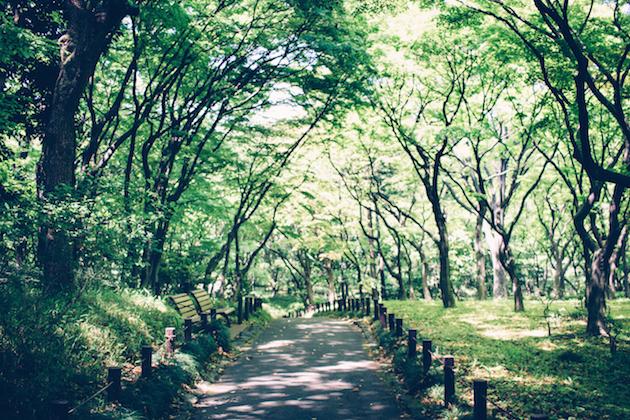tokyo-imperial-palace-garden-1