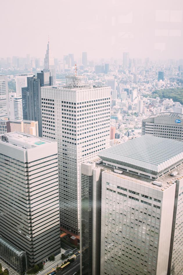 tokyo-metropolitan-observation-deck-7