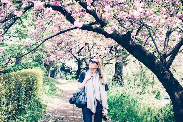 tokyo-sakura-mid-april-11
