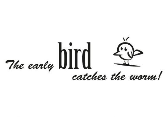wandtattoo_the-early-bird_einzel-web