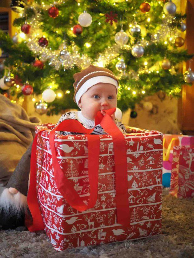 joulupotretti