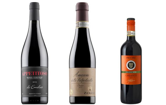 viinit gorgonzolapastalle