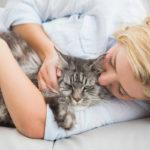 Kissa ei maanittelusta välitä vaan päättää itse, milloin on hyvä hetki silittelyille.