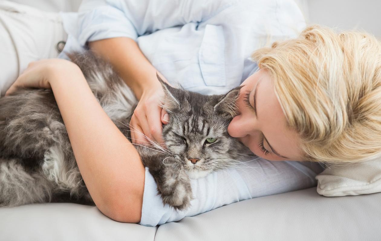 Nämä 15 asiaa vain kissaihmiset tietävät elämästä