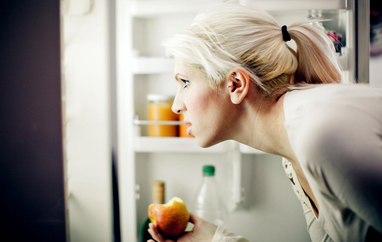 Jääkaappi haisee pahalta