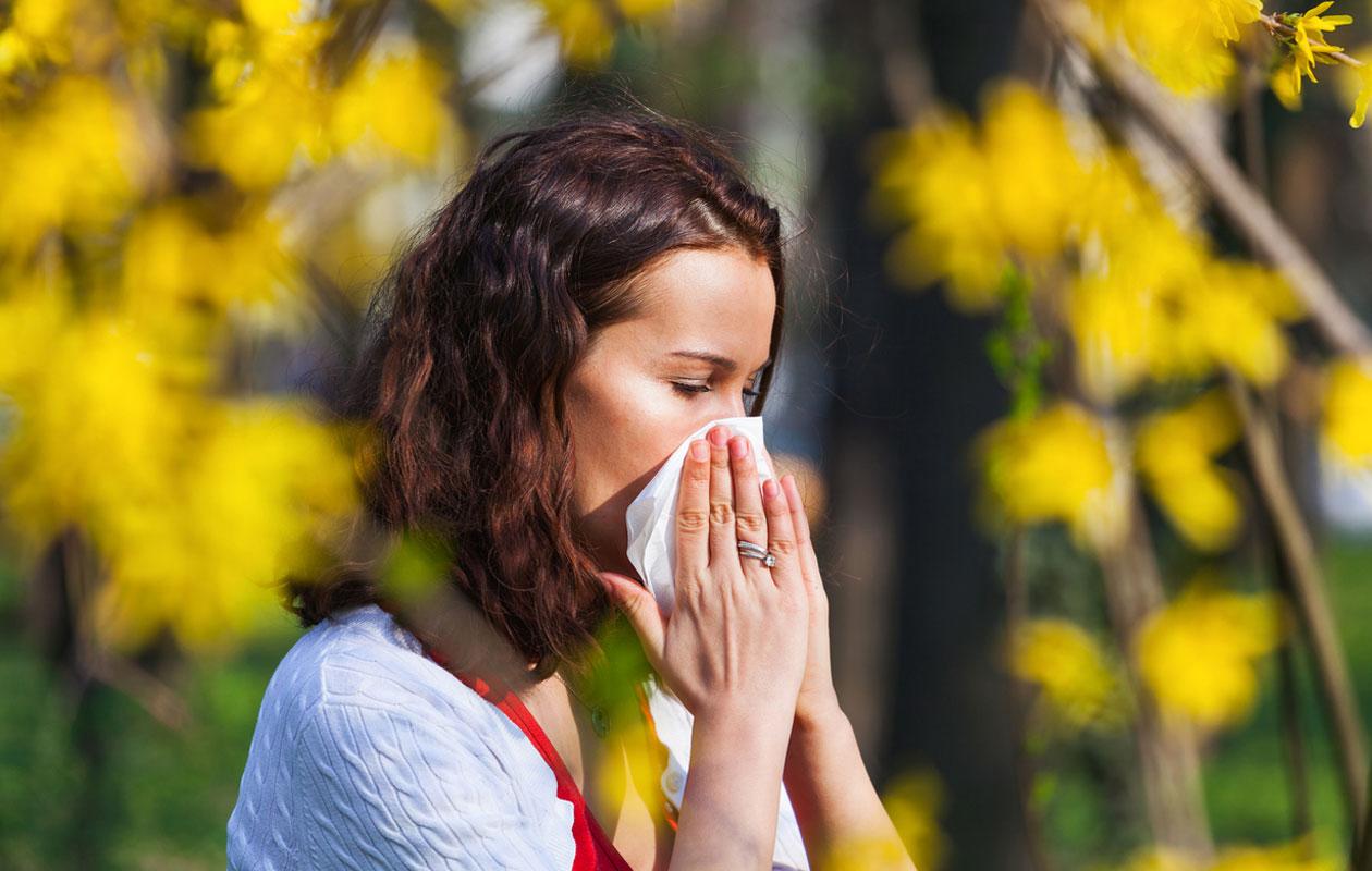10 vinkkiä allergiakauteen – näin helpotat siitepölyallergian oireita