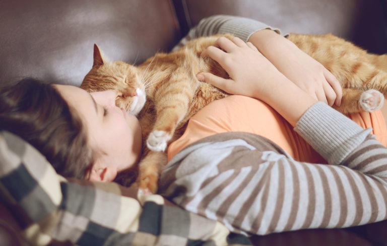 Näin lemmikit vaikuttavat tunne-elämääsi – 4 tutkittua positiivista muutosta