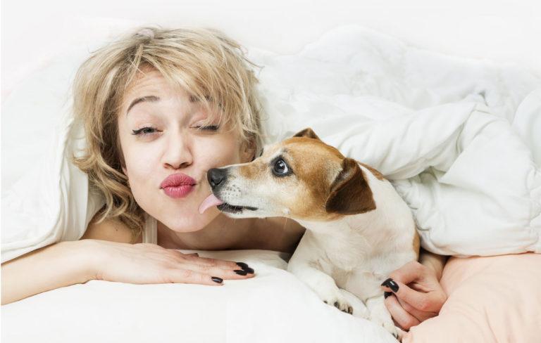 Koira ja nainen saman peiton alla