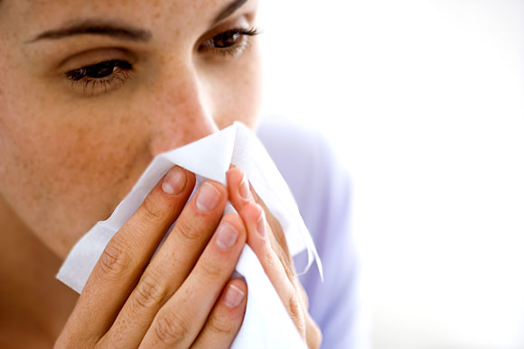 Allerginen Nuha