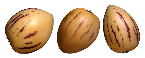 Päärynämeloni