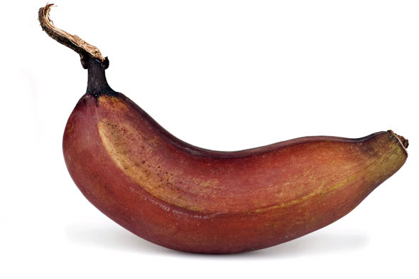 Banaani Jääkaappi