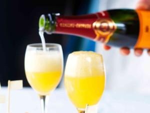 906176-mimosa.jpg